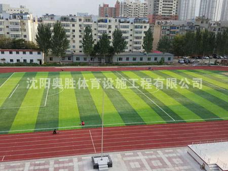 三十五中人造草坪足球场