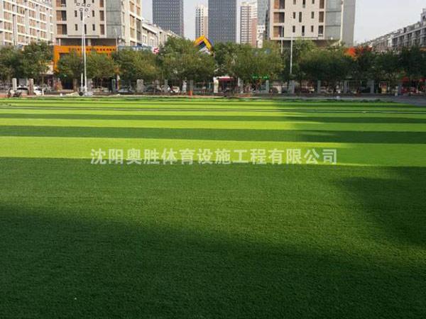 铁西区勋望小学人造草坪